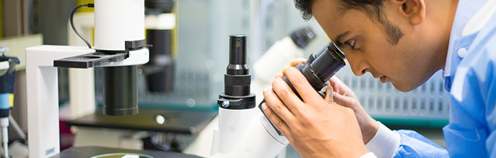 Researcher looking down microscope